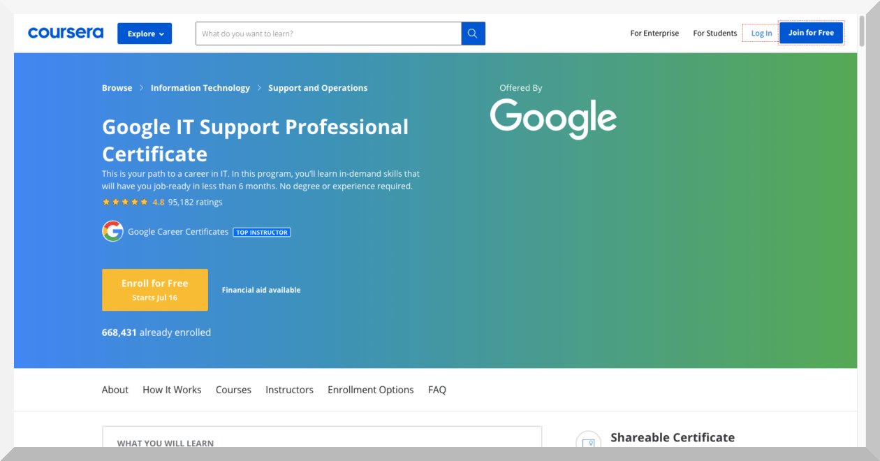 Google IT Support by Google